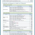 [Cell Signaling Technology] SARS-CoV-2 연구 관련 신제품을 소개합니다!