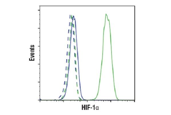 HIF-1a FC data