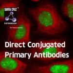 [Santa Cruz] NEW ImmunoCruz® Direct Conjugated Antibodies
