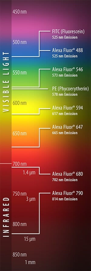 VisibleLight-Infrared-Chart-Image